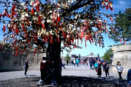 священное древо Юньгана