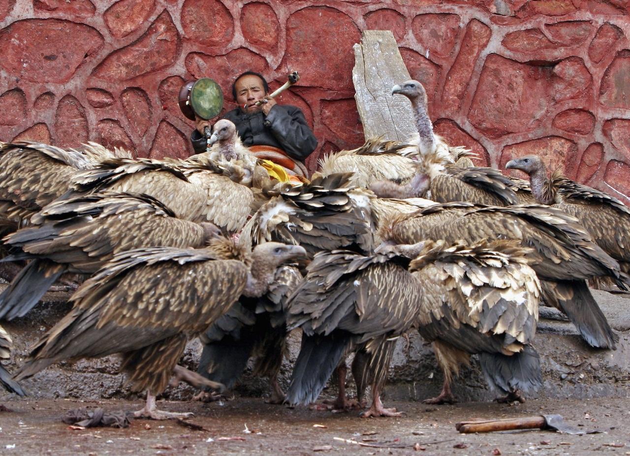 Рогъяпа молится перед церемонией небесного погребения