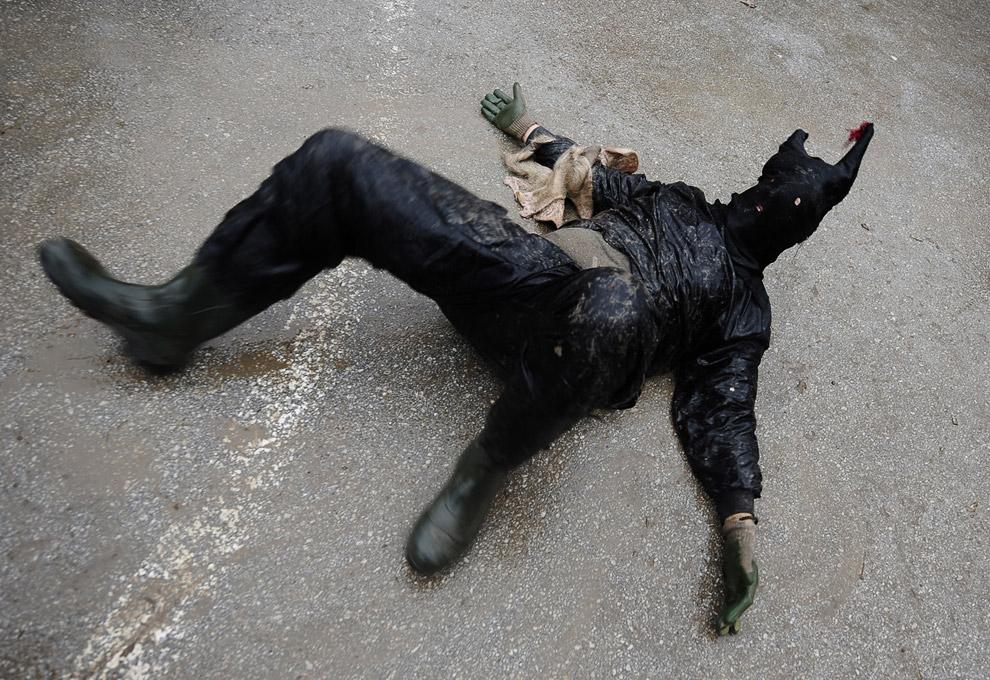 черное чудовище, Вевчани