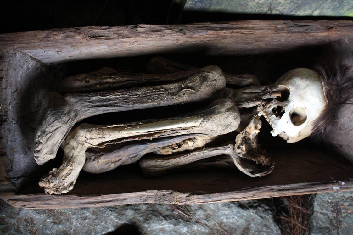 скрюченная мумия