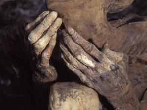 руки мумии