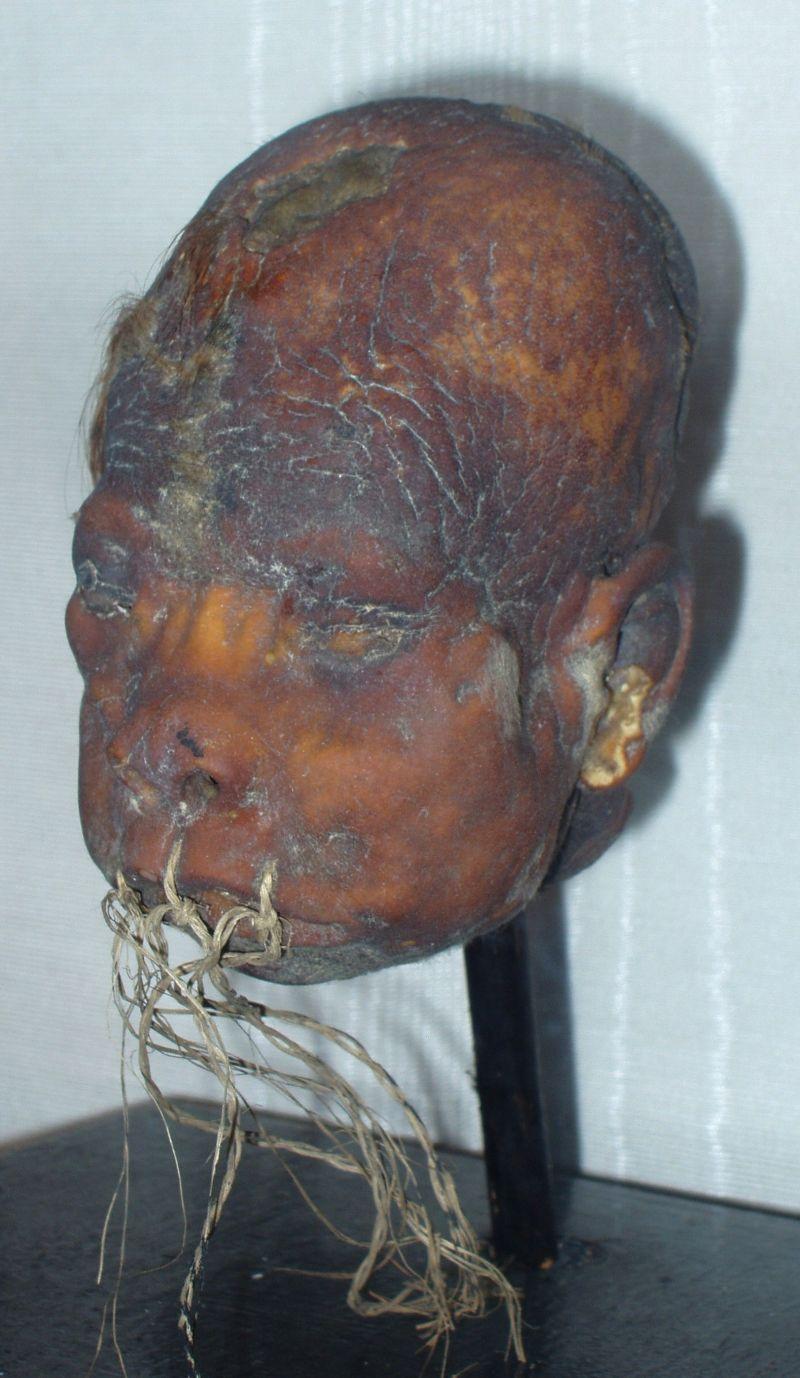 голова негритоса
