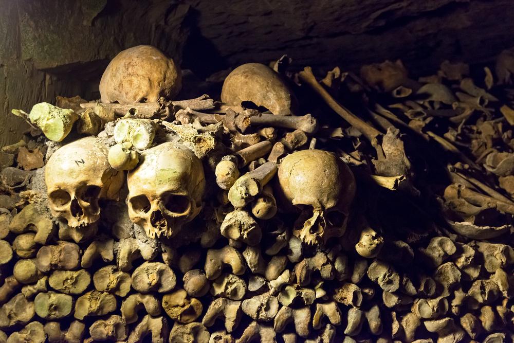 скелеты в стене