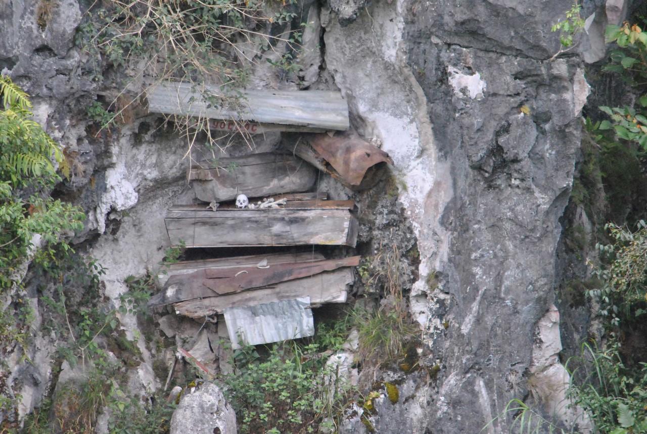 скелет выглядывает из гроба