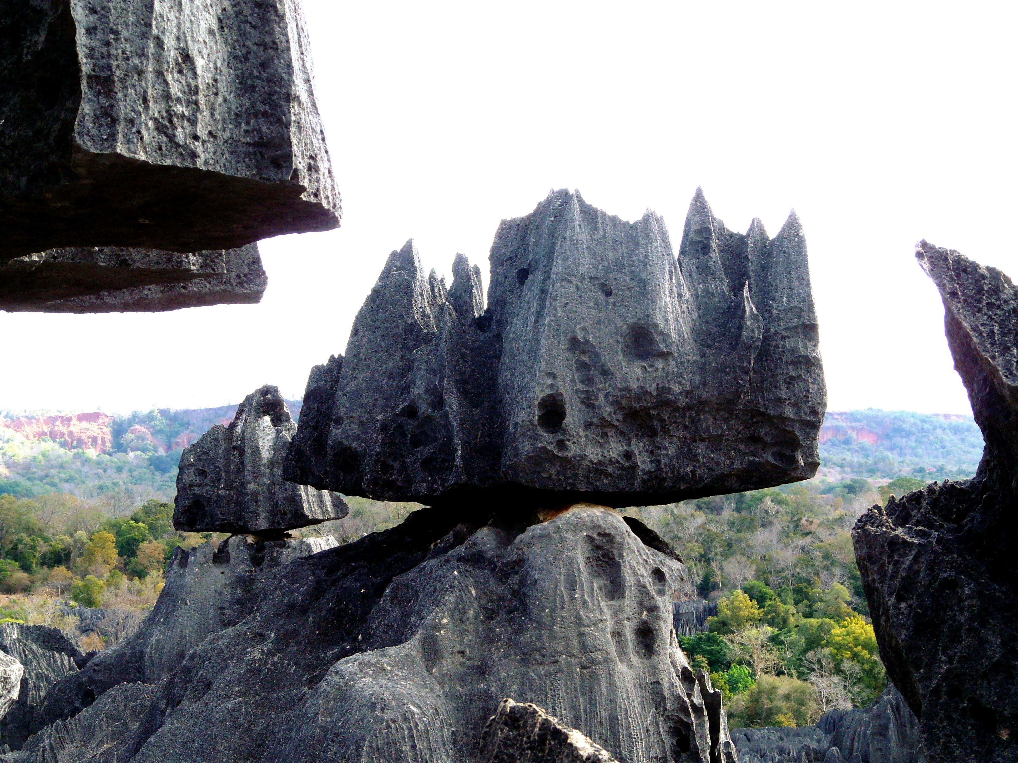 мегалиты каменного леса