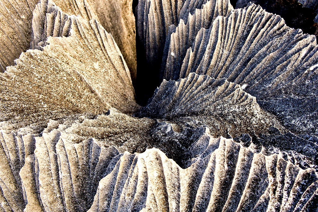 ландшафт каменного леса