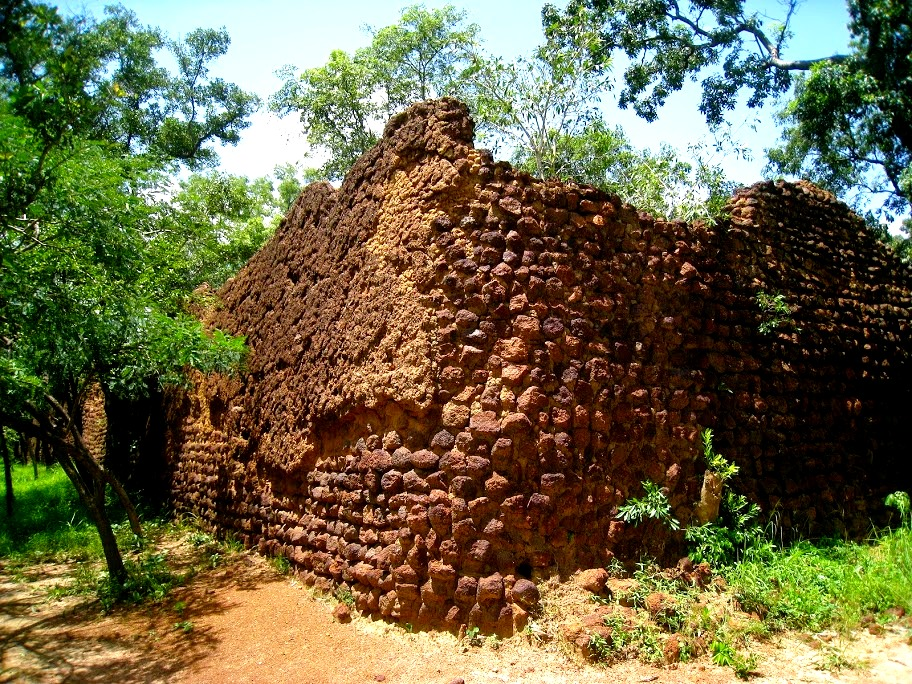 стены лоропени