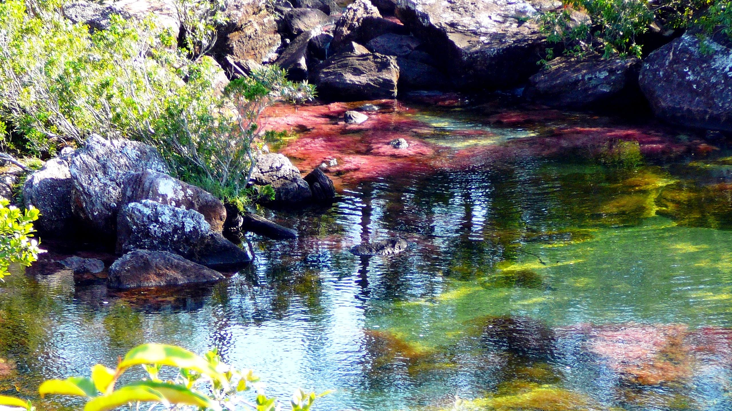 панорама реки каньо кристалес