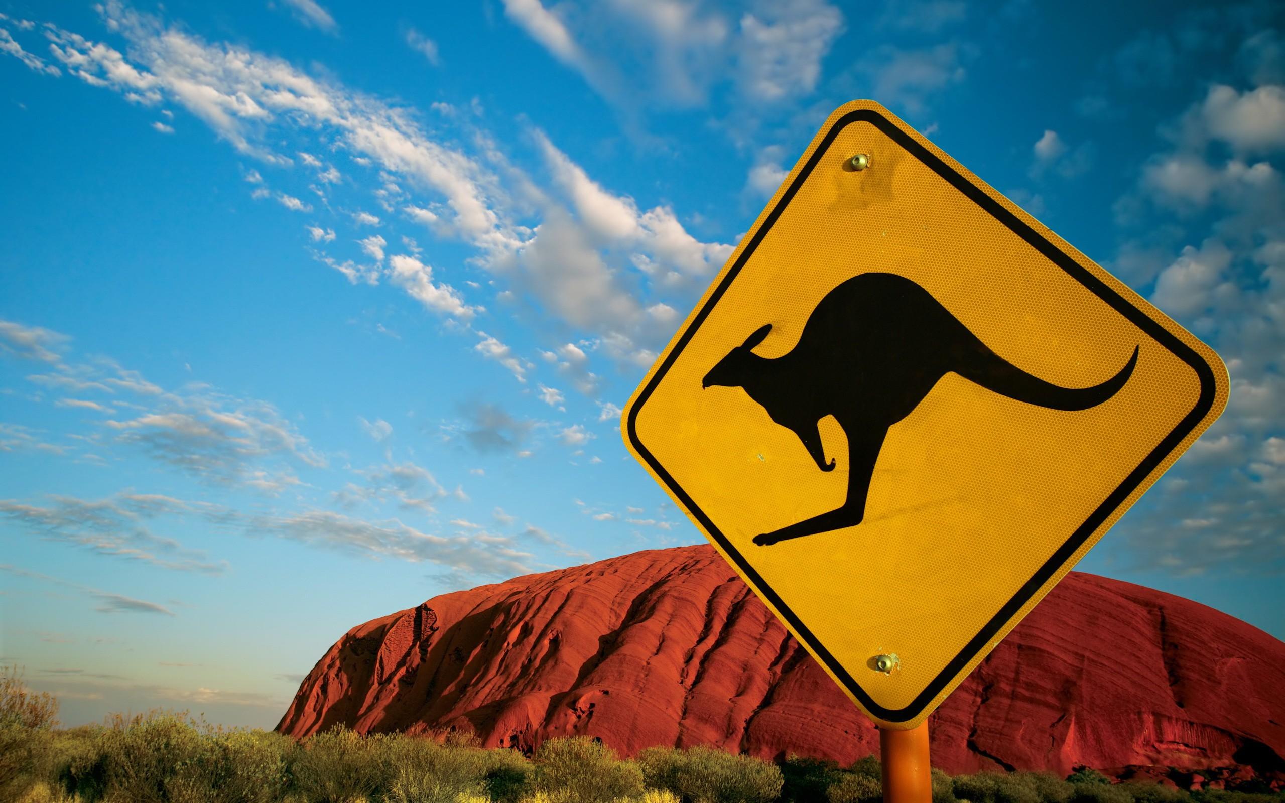 дорожный знак кенгуру