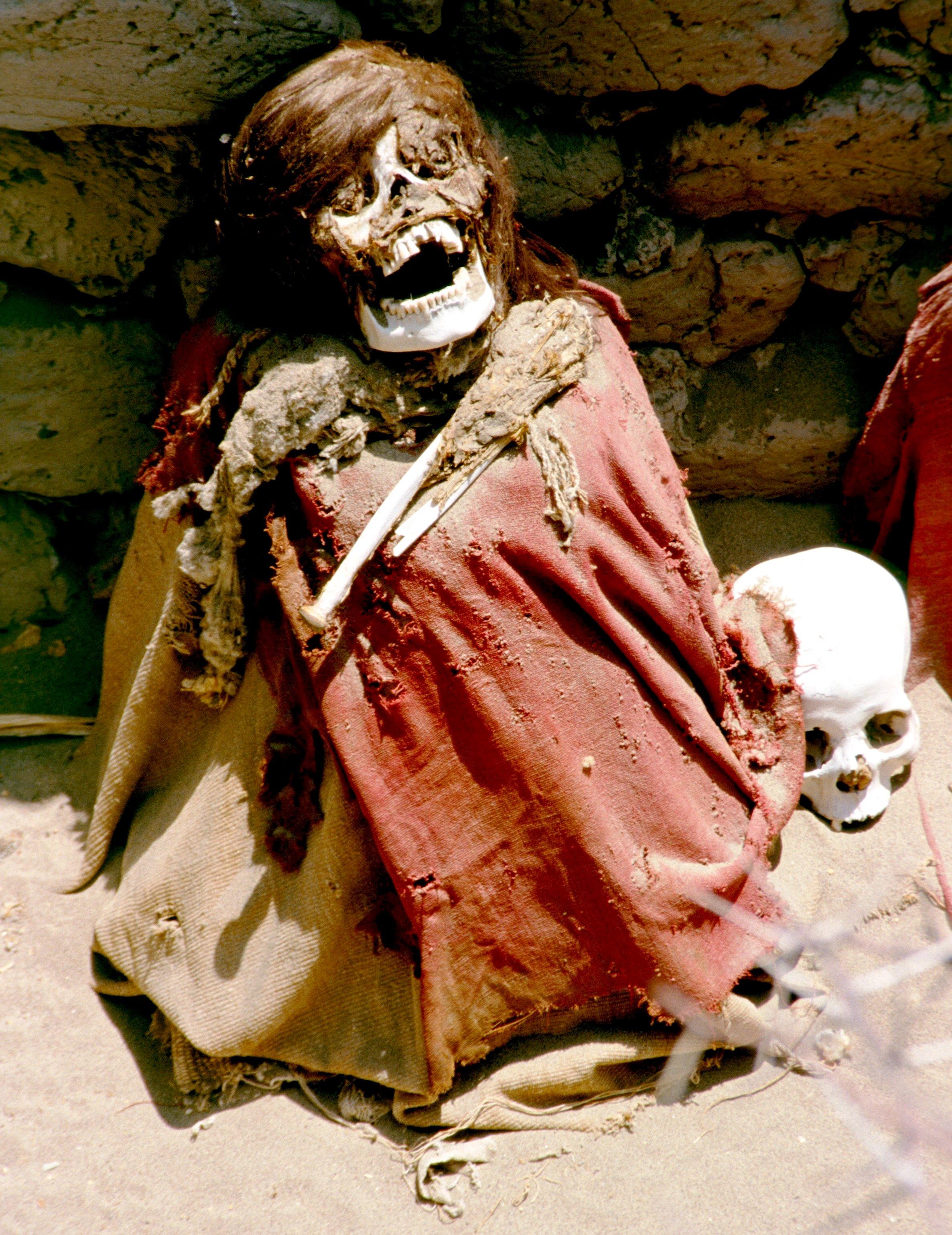 волосатый скелет
