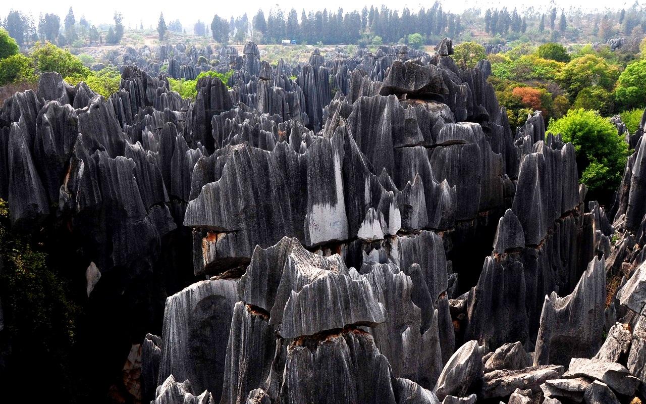 вид каменного леса