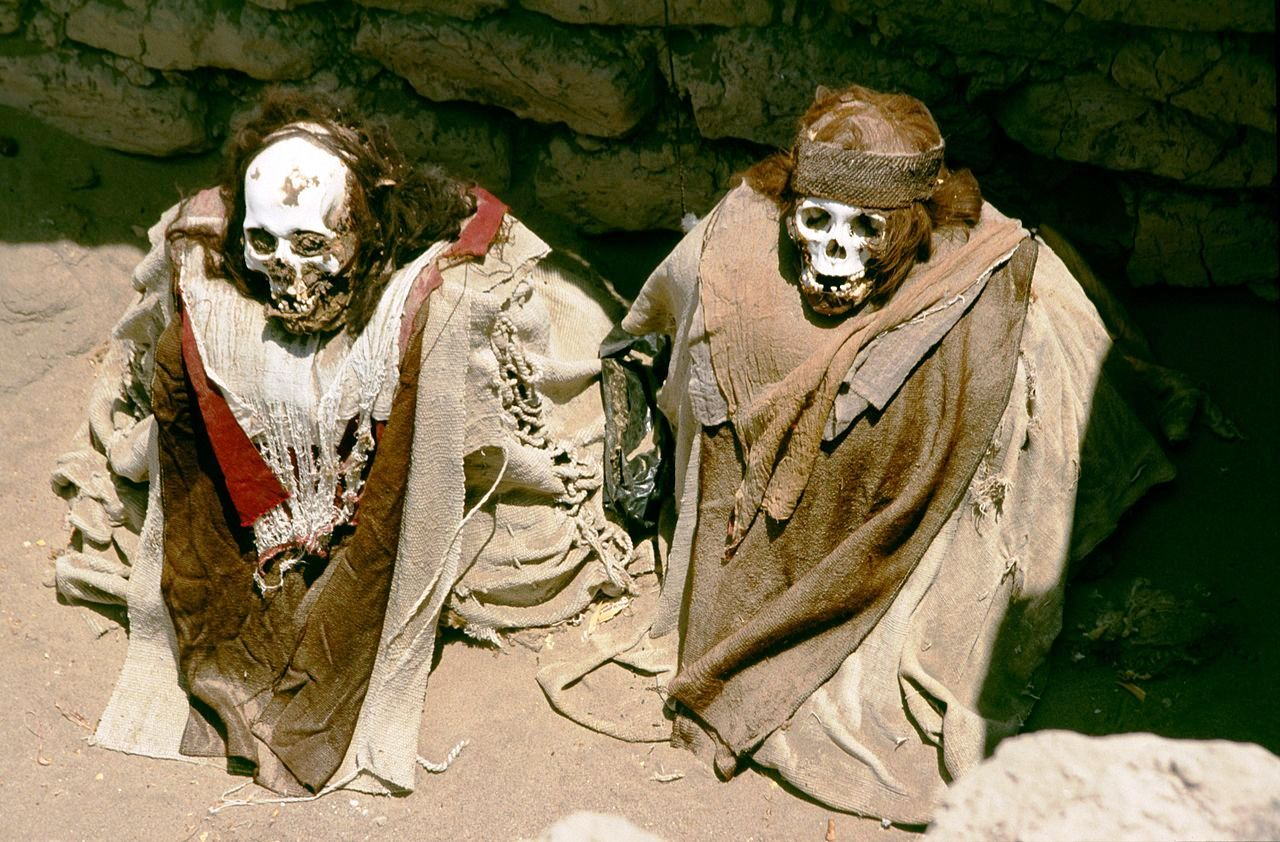 два скелета чаучильи