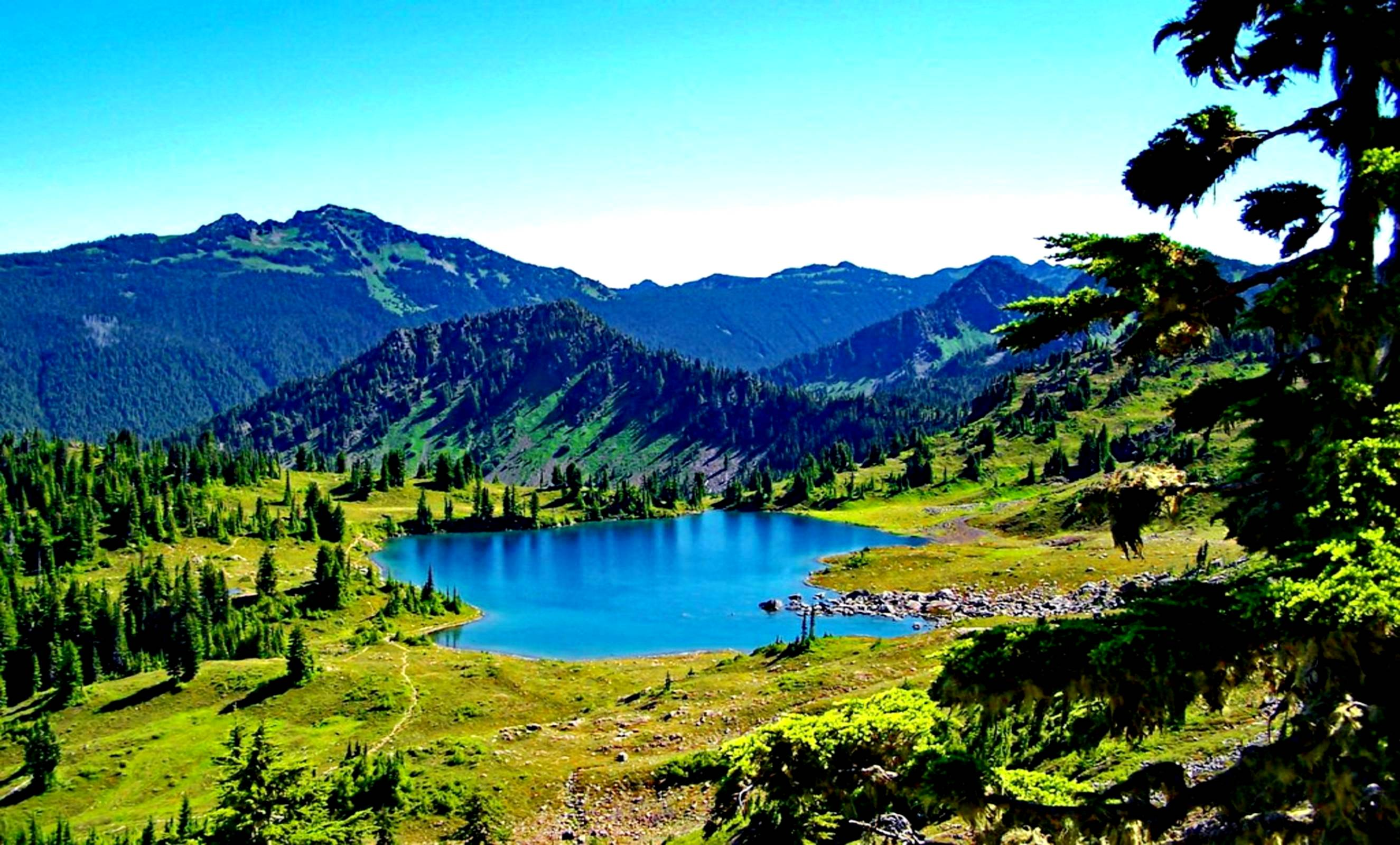 озеро в парке олимпик