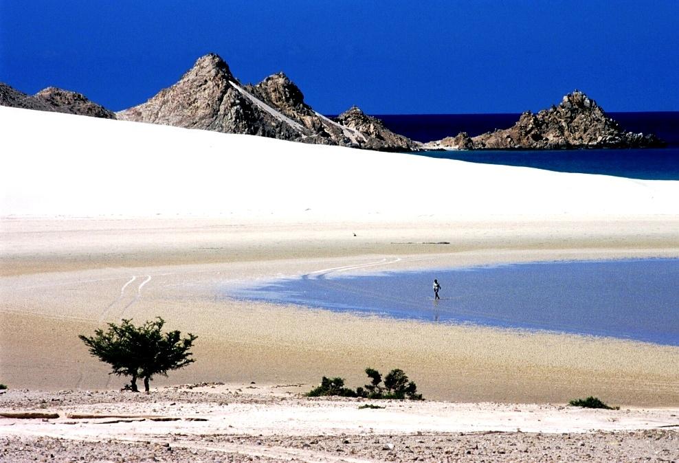пески сокотры