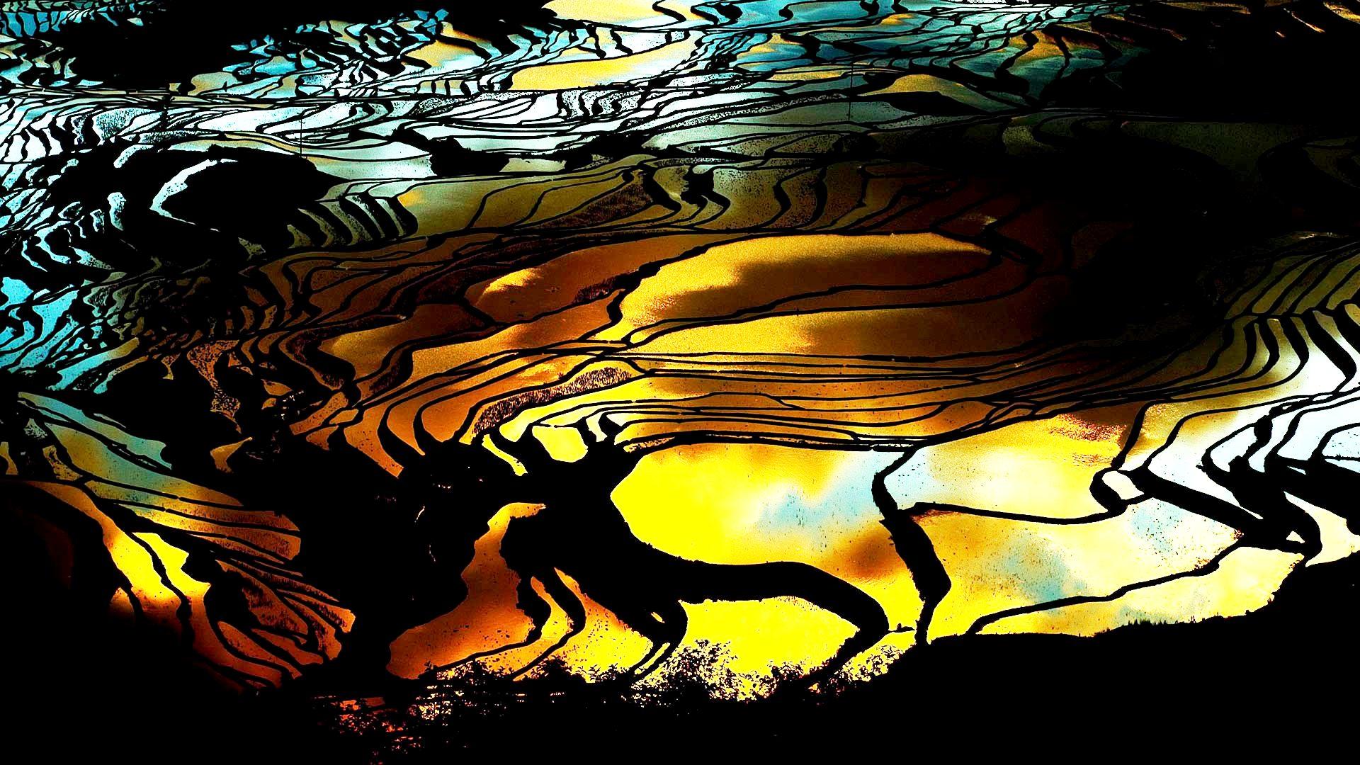 ночной пейзаж рисовых террас