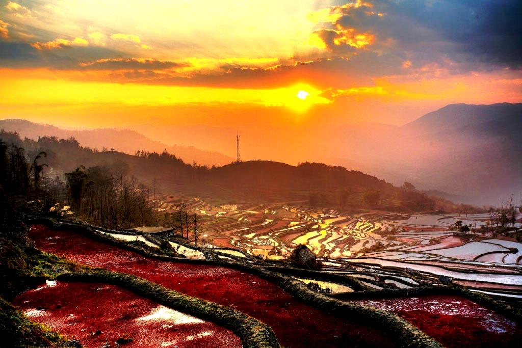 вечерний пейзаж рисовых террас