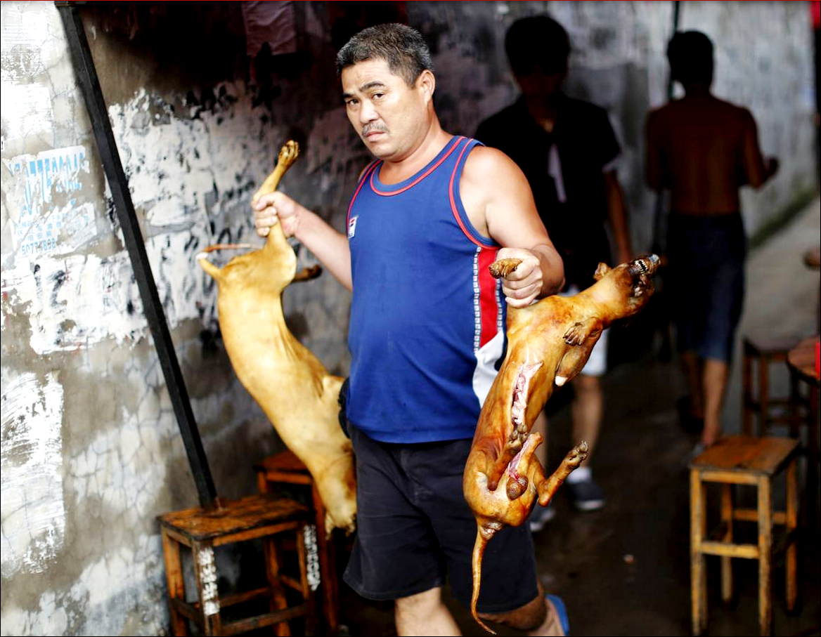 китаец с двумя собаками