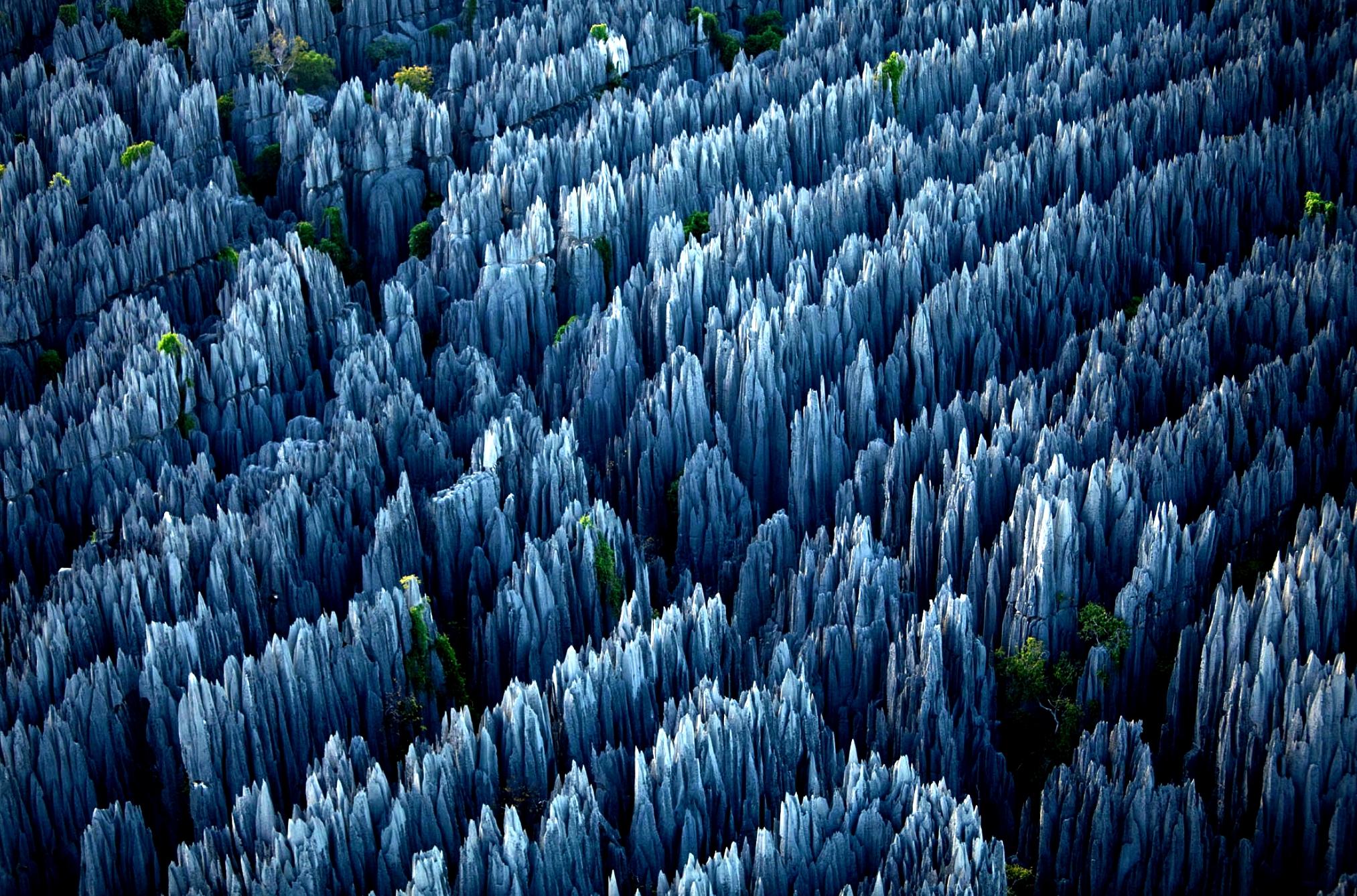 скалы каменного леса