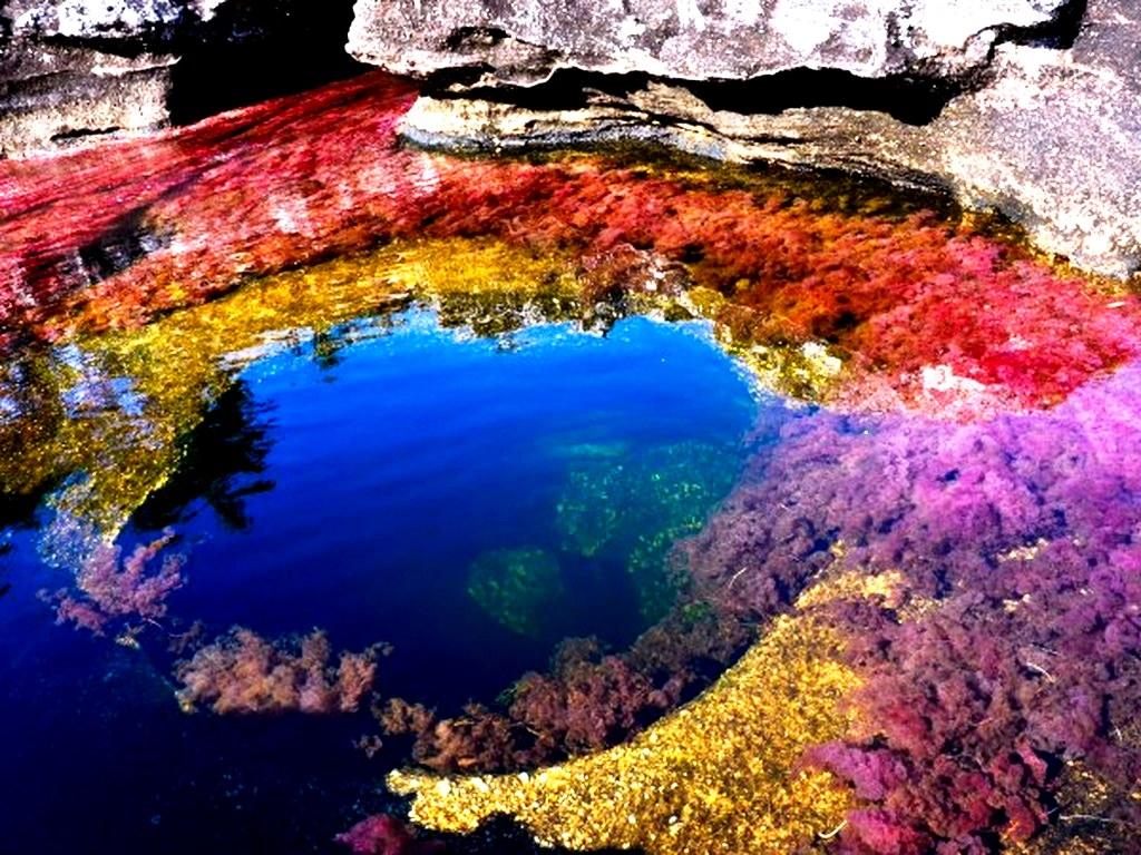 цветная речка