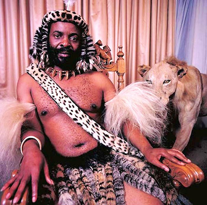 потомок чака зулу