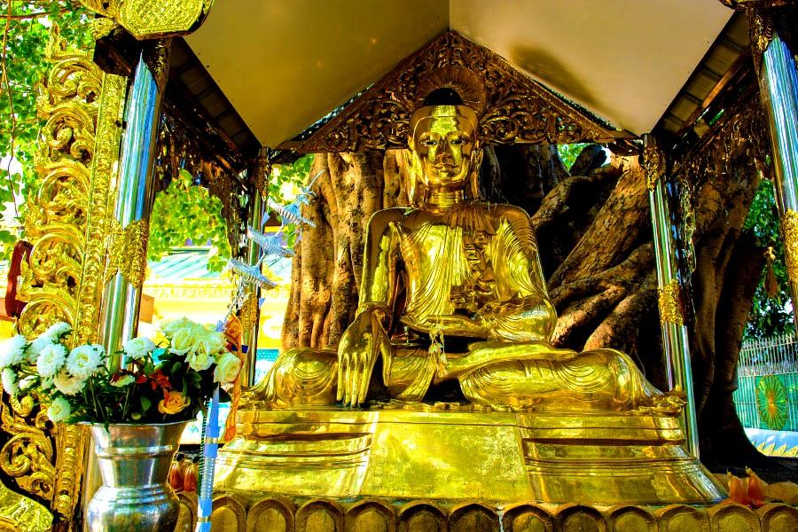 статуя будды под навесом