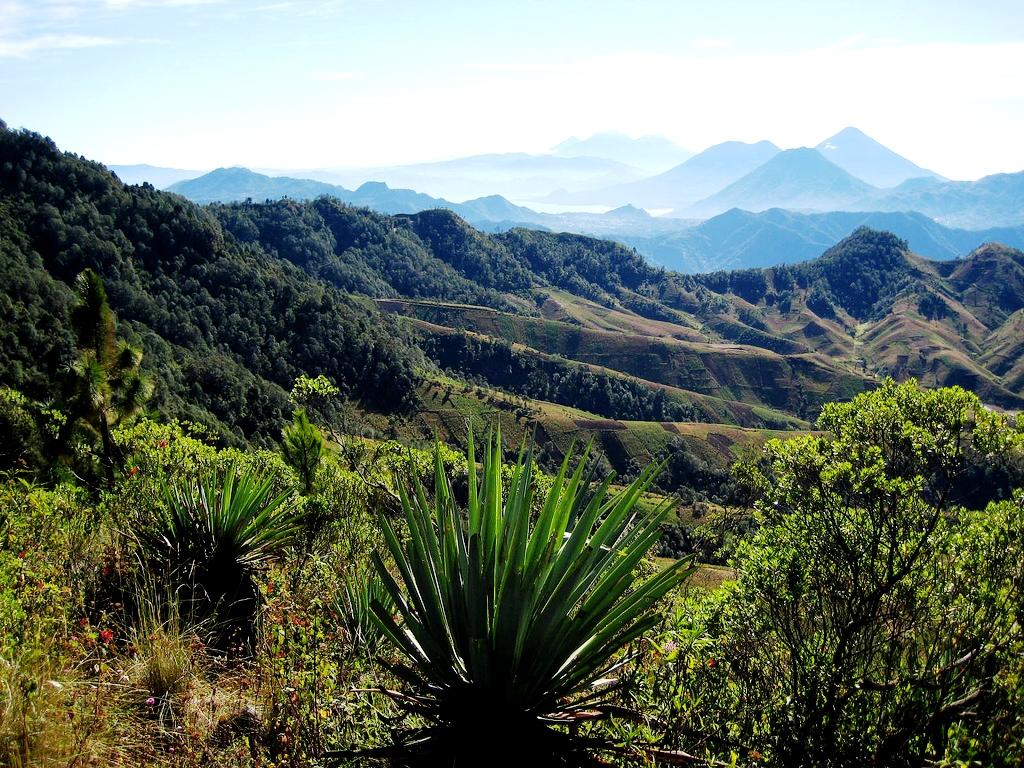 пейзаж гуанакасте