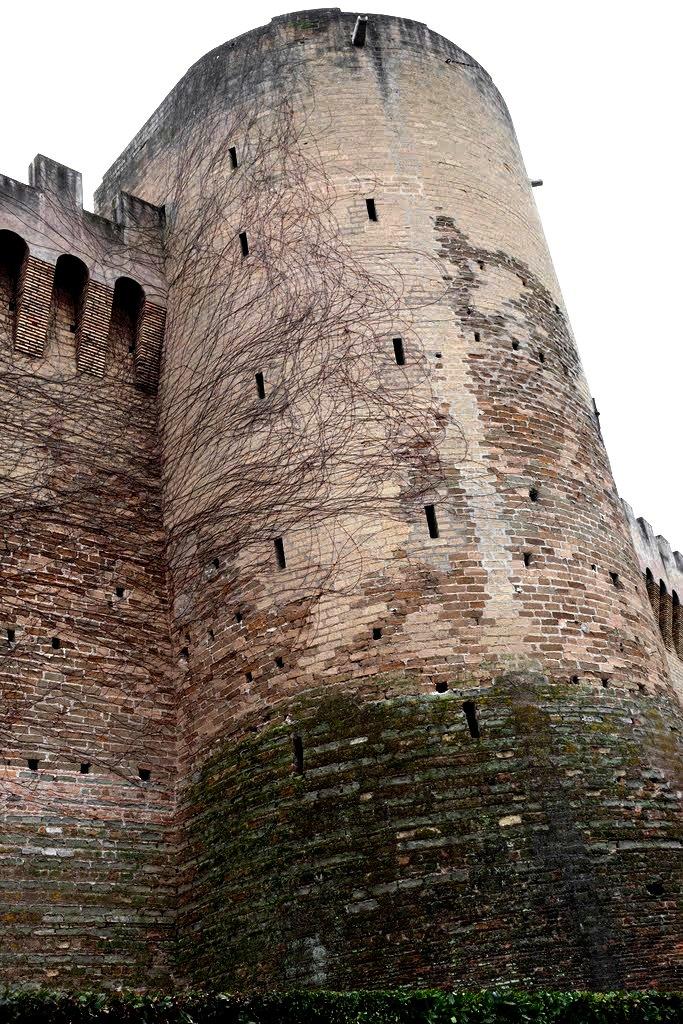 стена ватикана