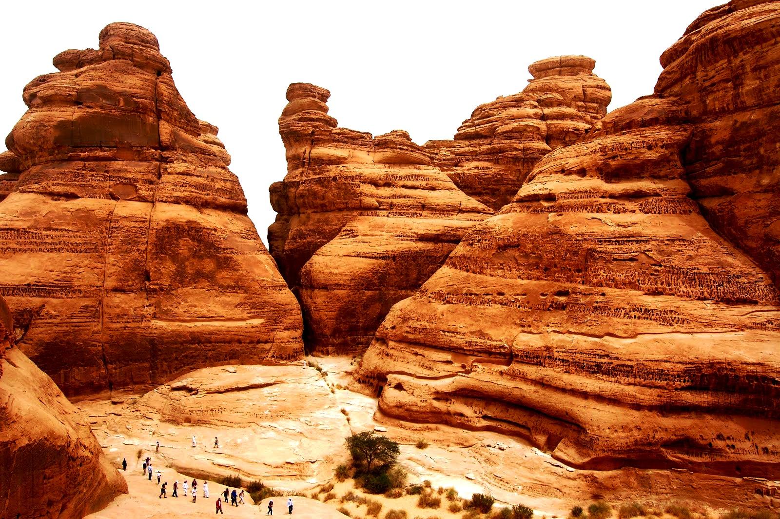 скалы мадаин-салиха