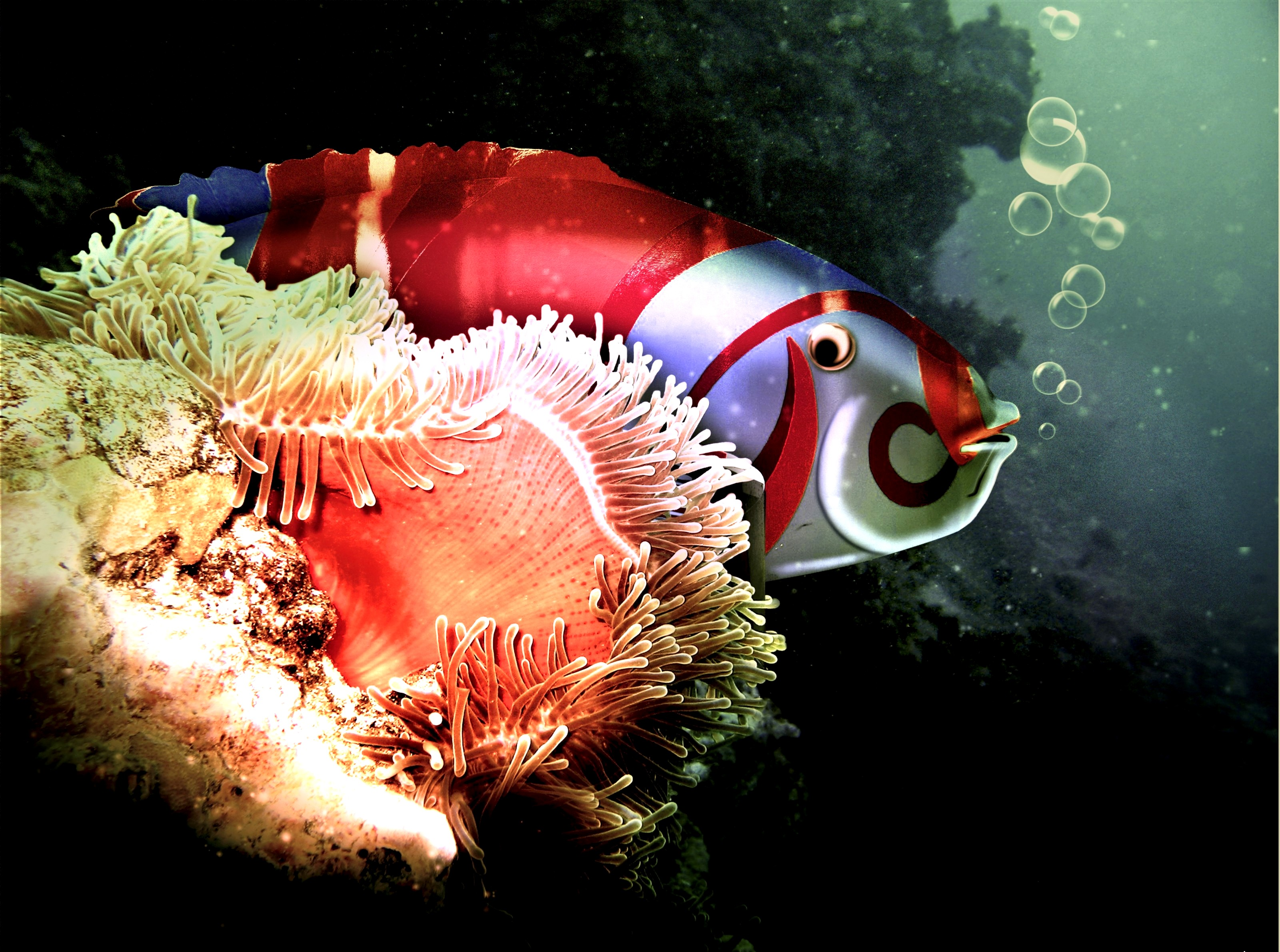 животный мир рифа туббатаха
