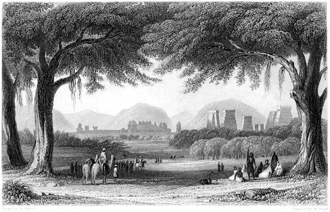 рисунок минакши амман