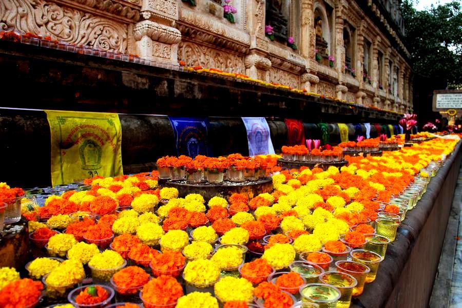 ковер цветов в бодхгае