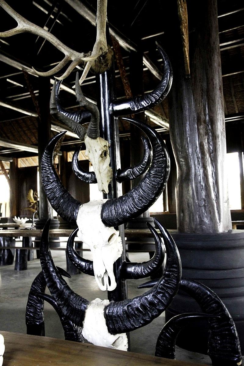 скелеты животных в черном доме