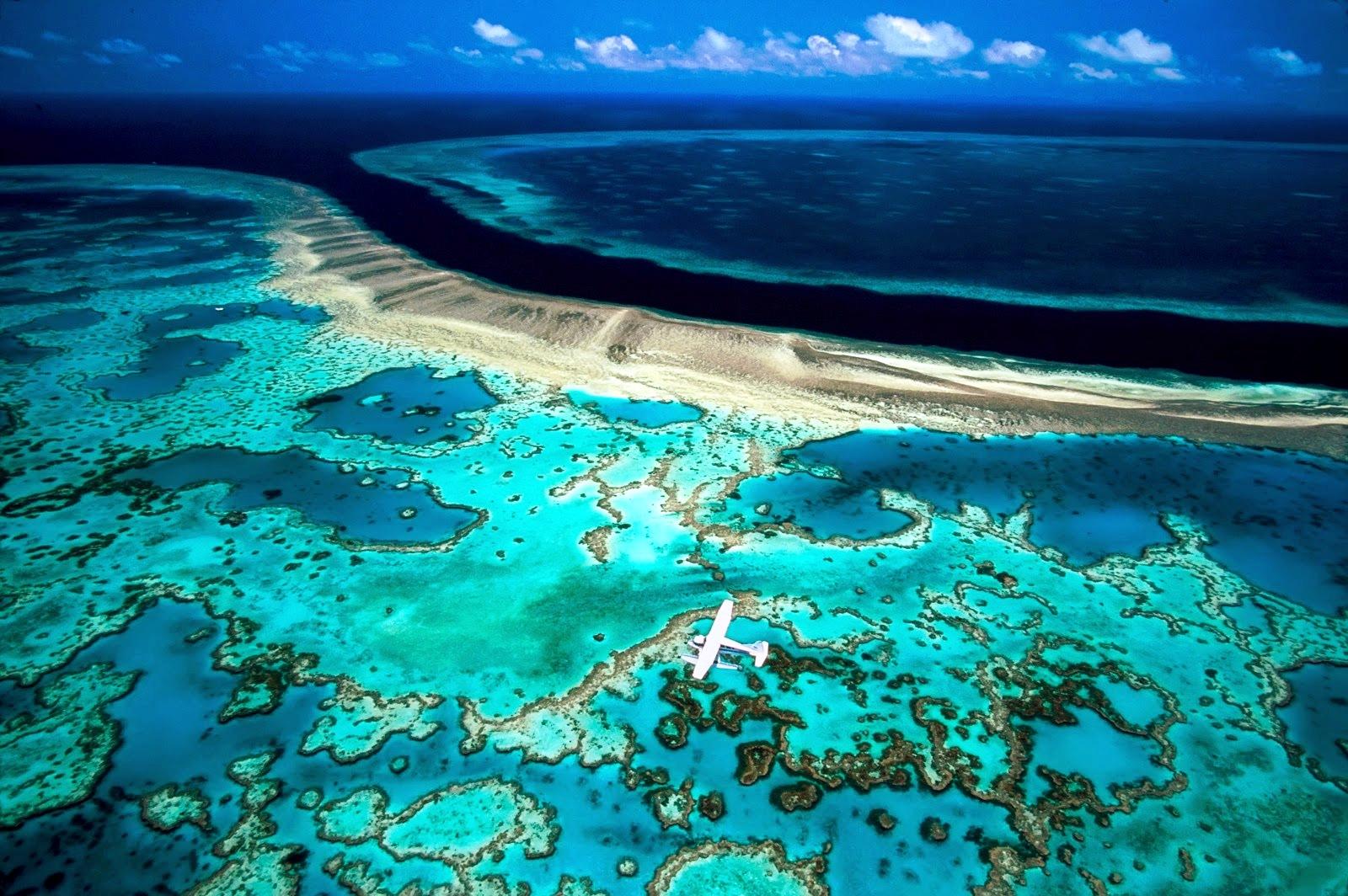 крупнейший риф в мире