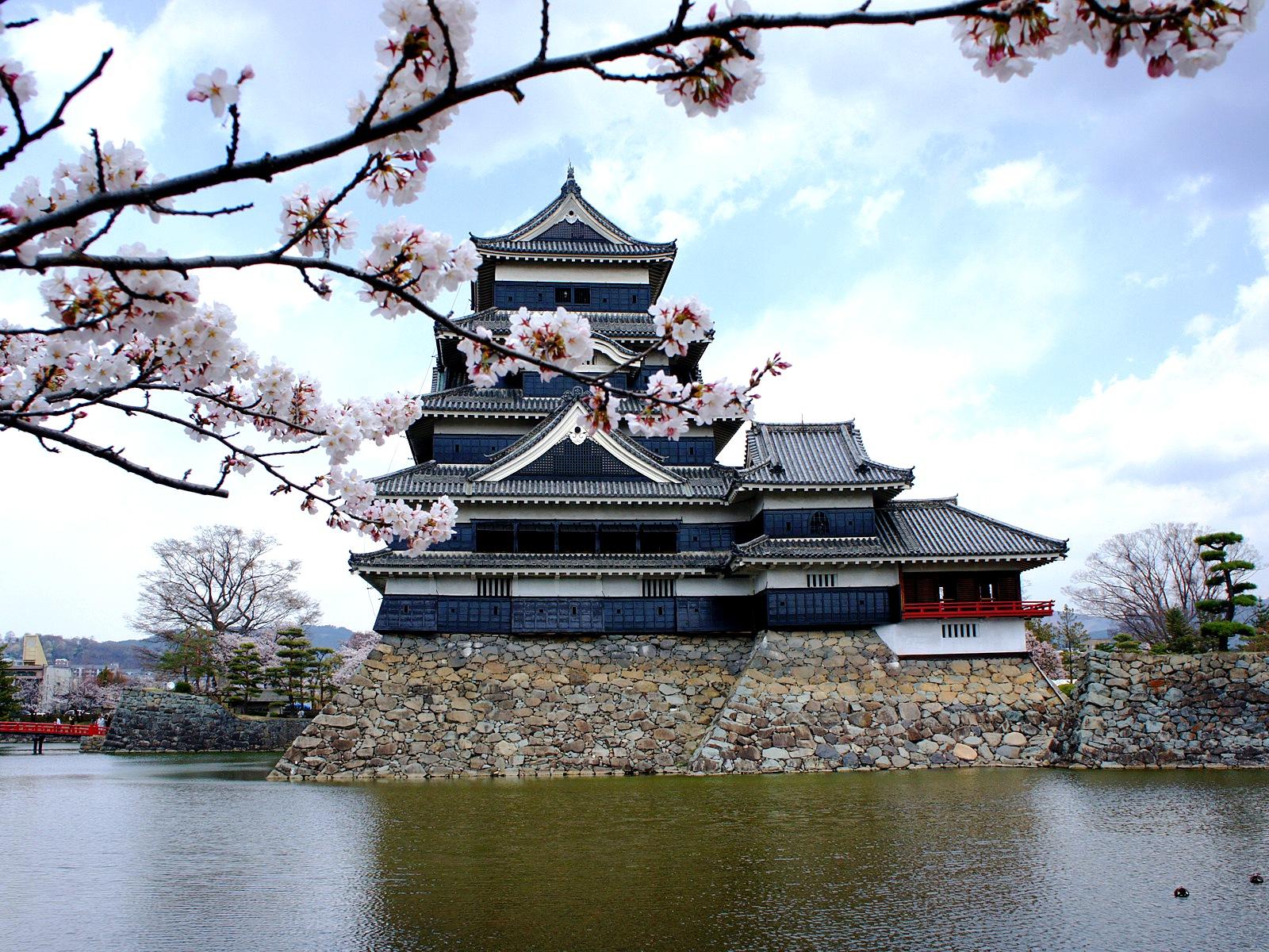 замок и ветвь сакуры