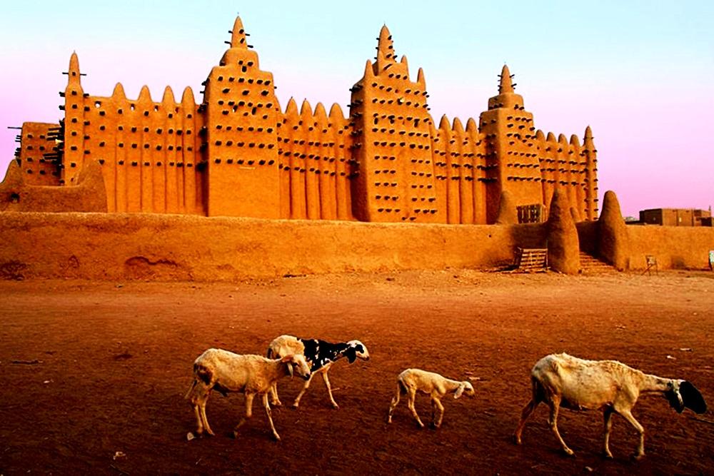 большая мечеть и овцы