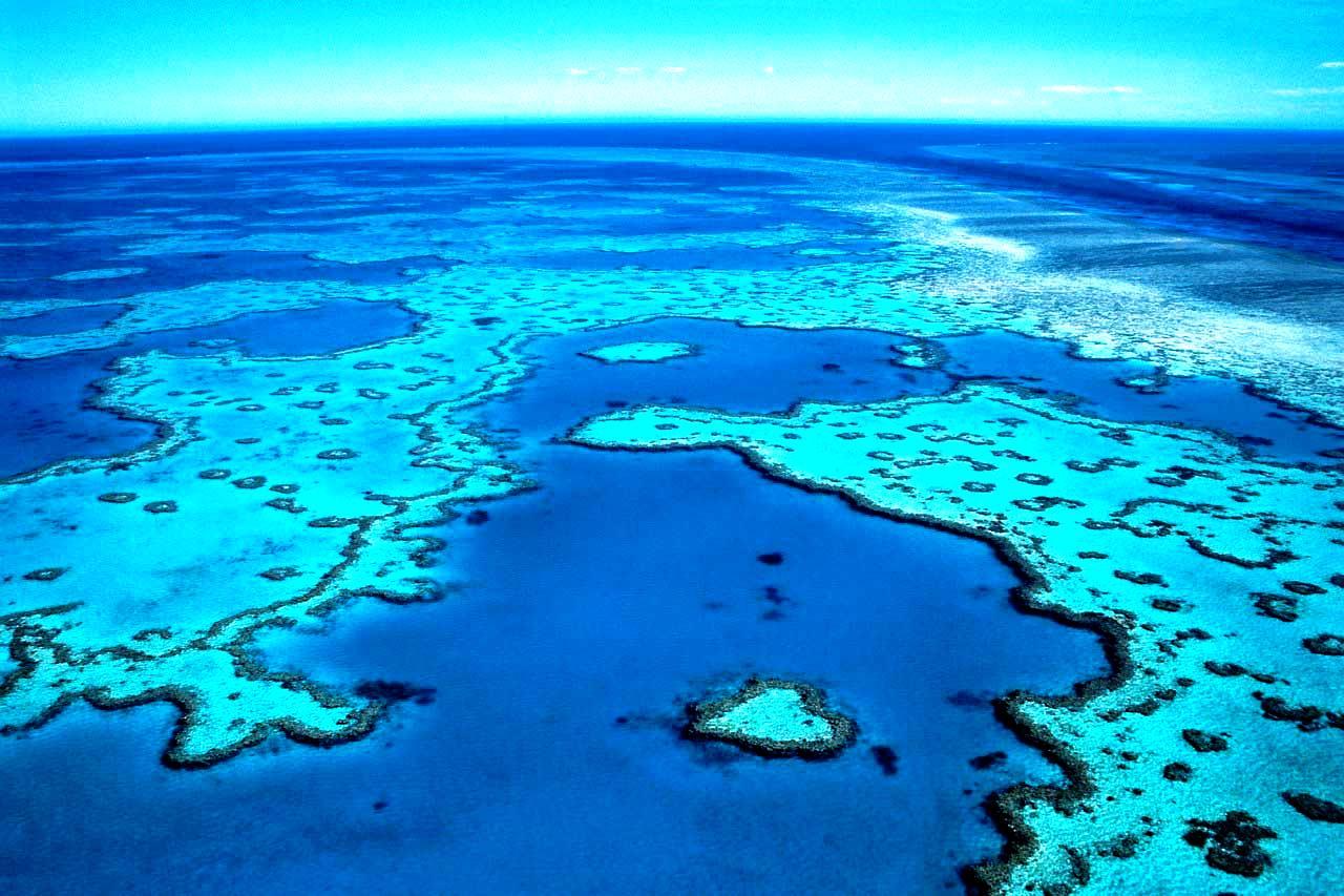 панорама большого барьерного рифа