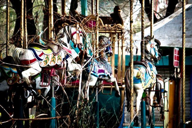 лошадки луна парка