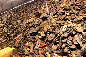 обувь узников освенцима