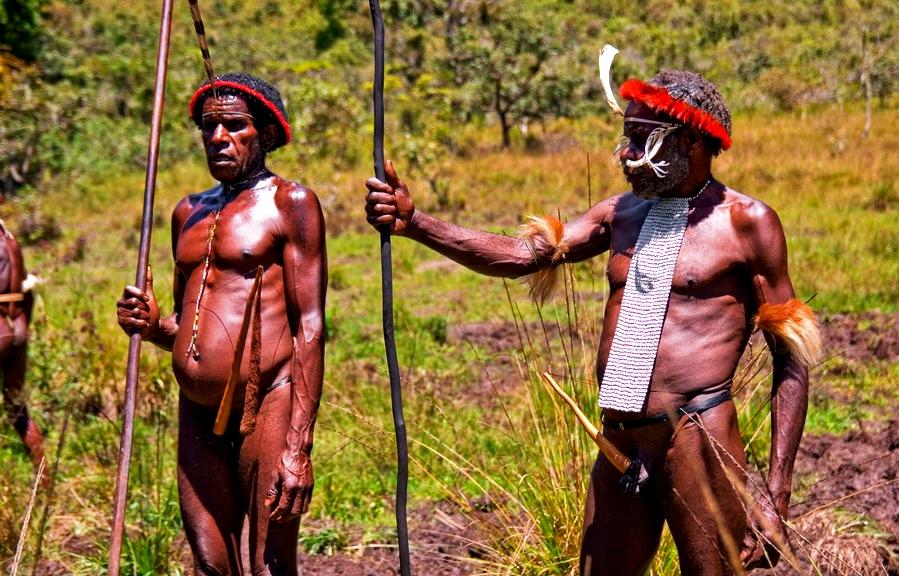 суровые папуасы из племени дани