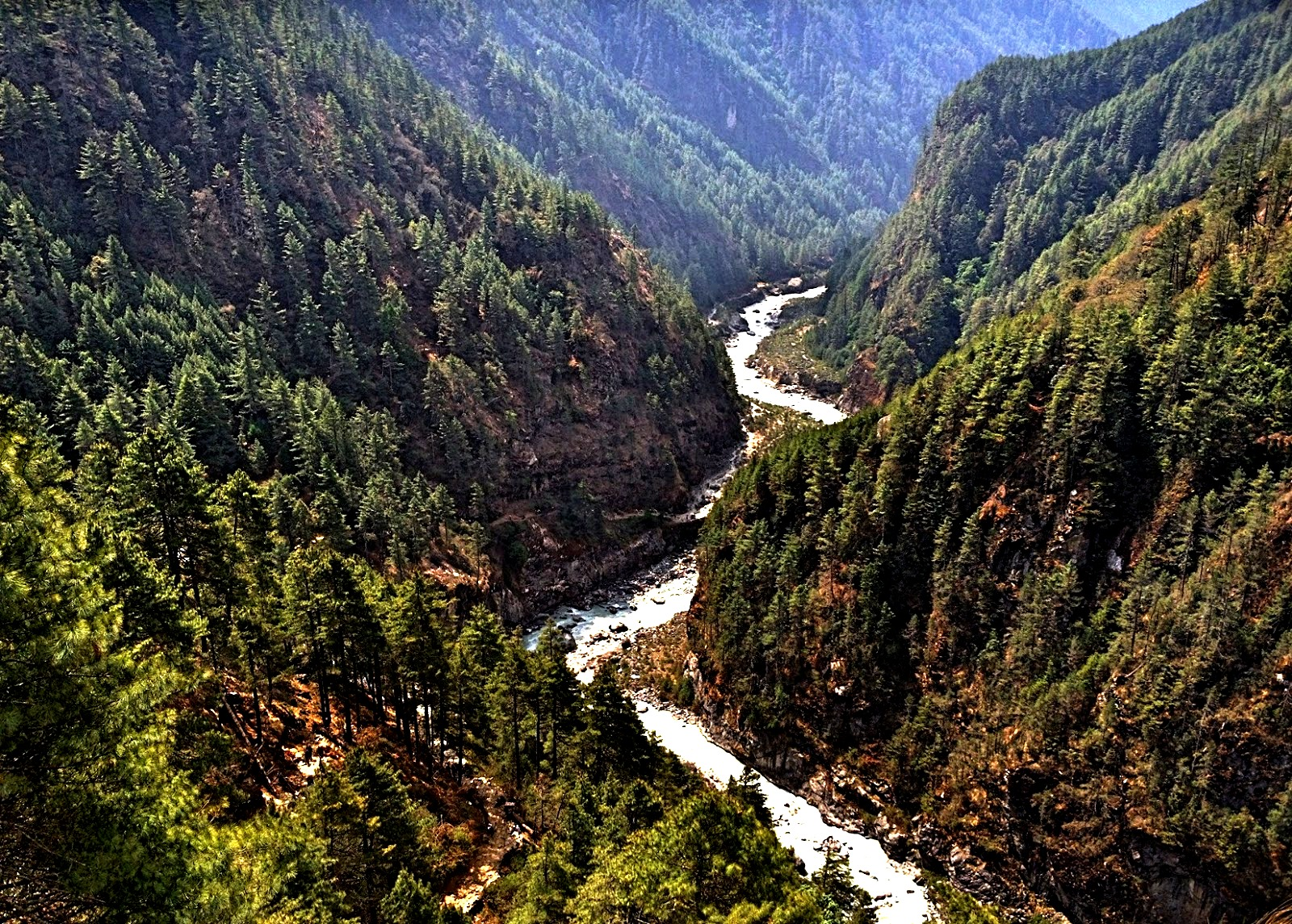 леса парка сагарматха
