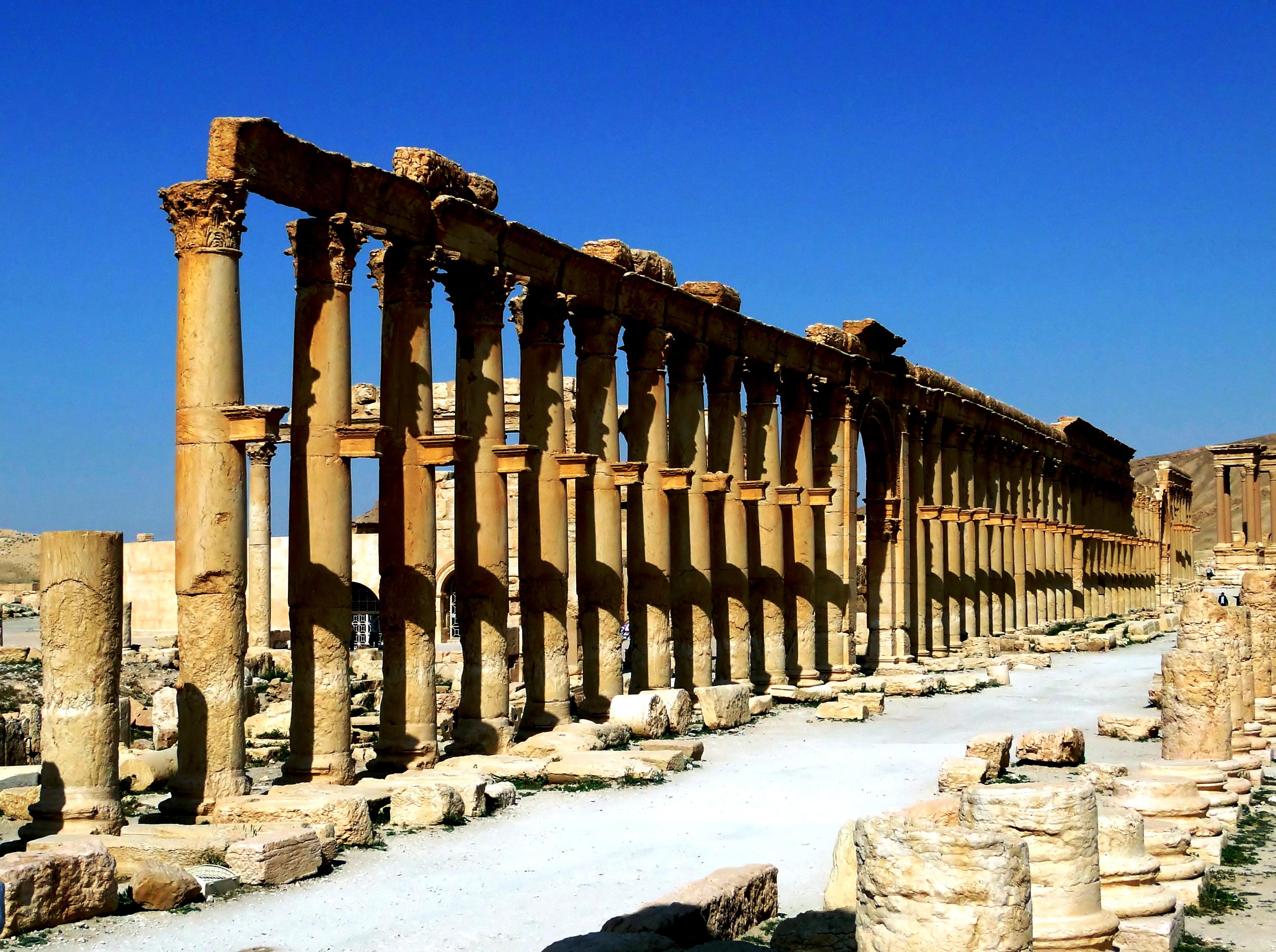 колонны пальмиры
