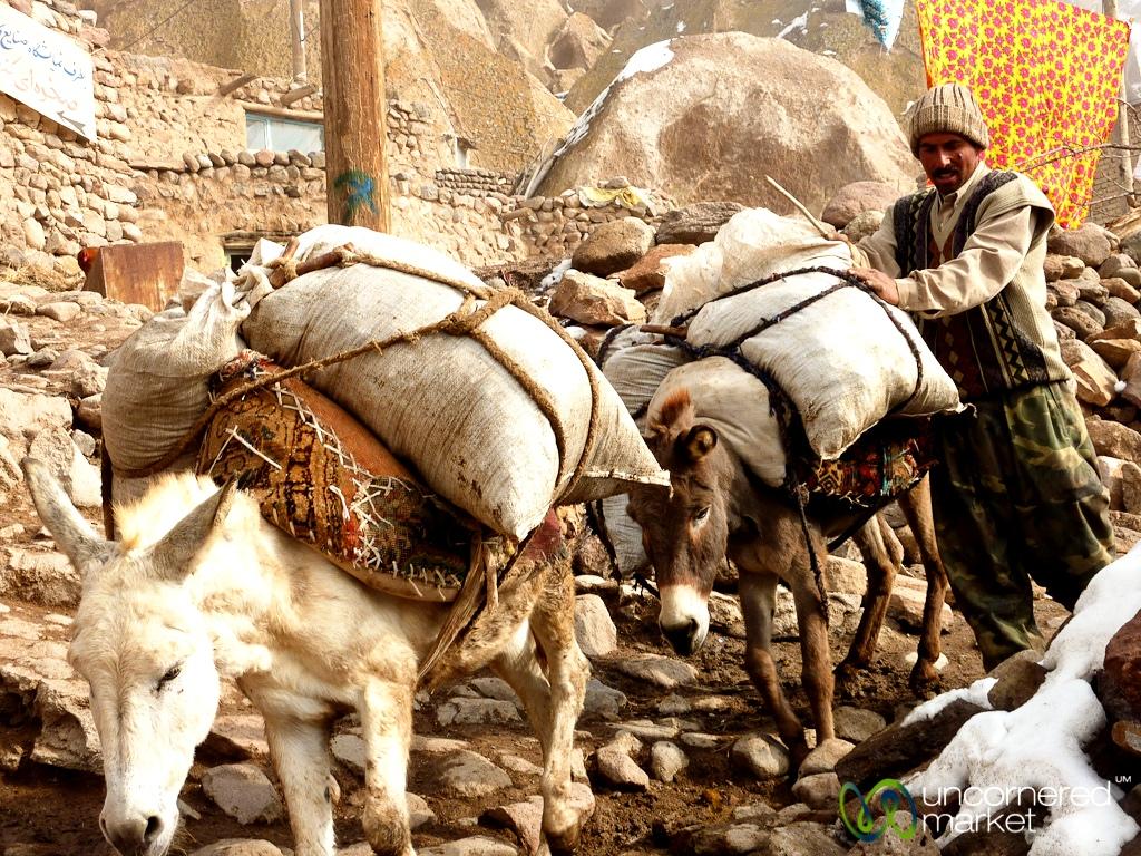 иранец с ослами