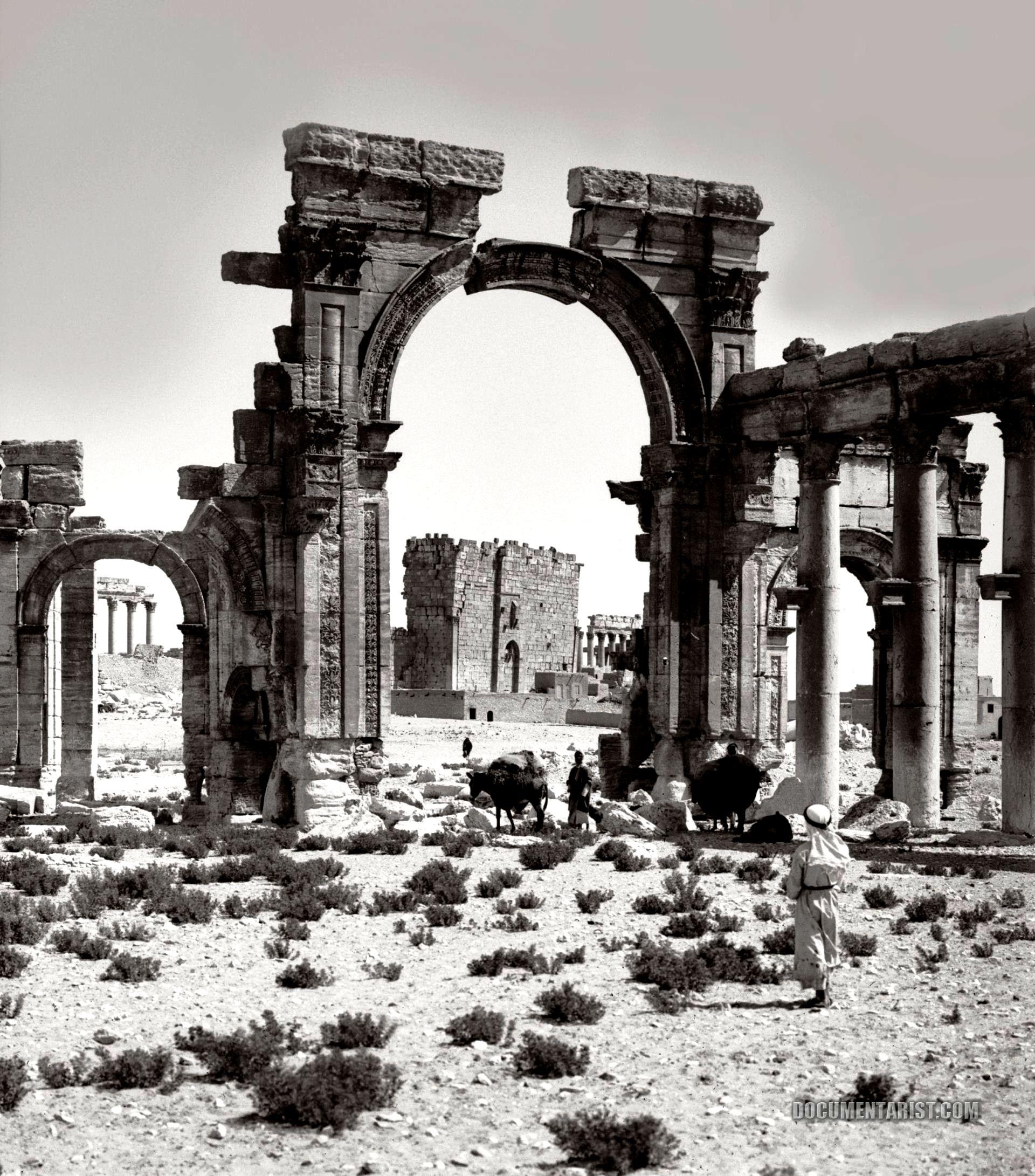старая пальмира