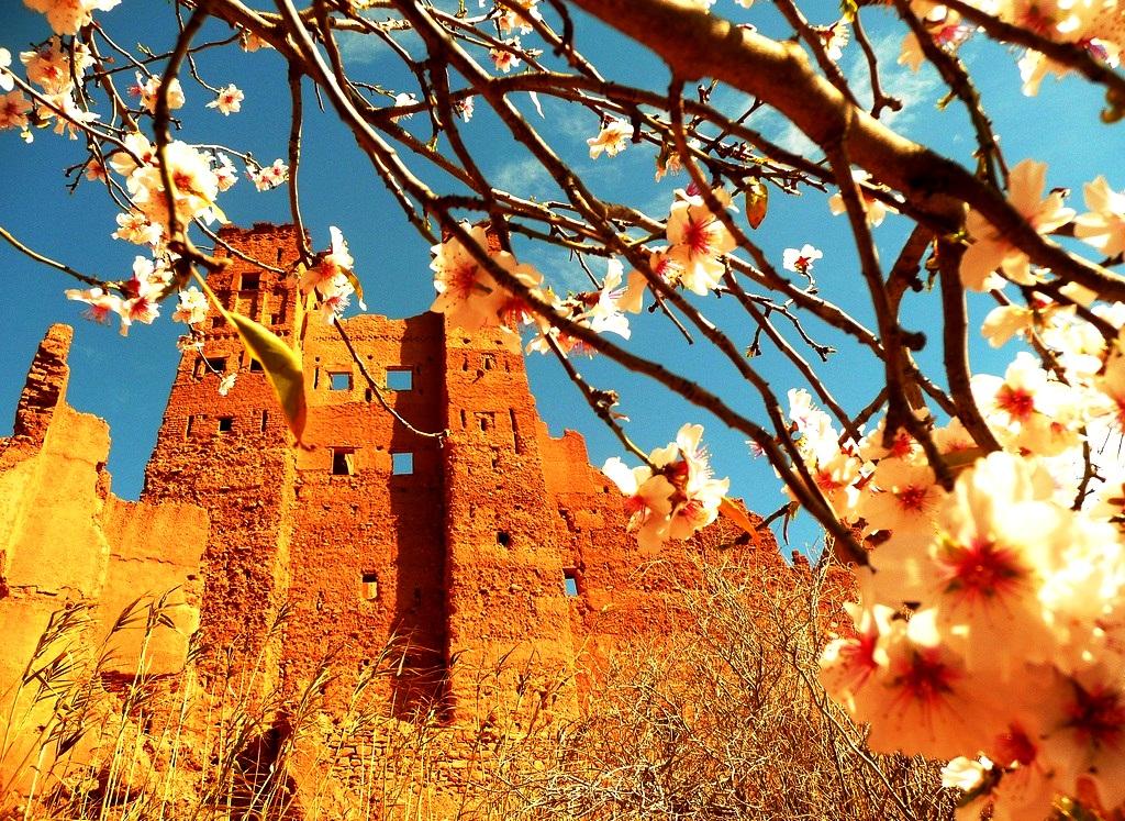 весенний пейзаж бен-хадду
