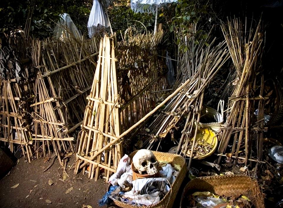 бамбуковые шалаши теруньяа
