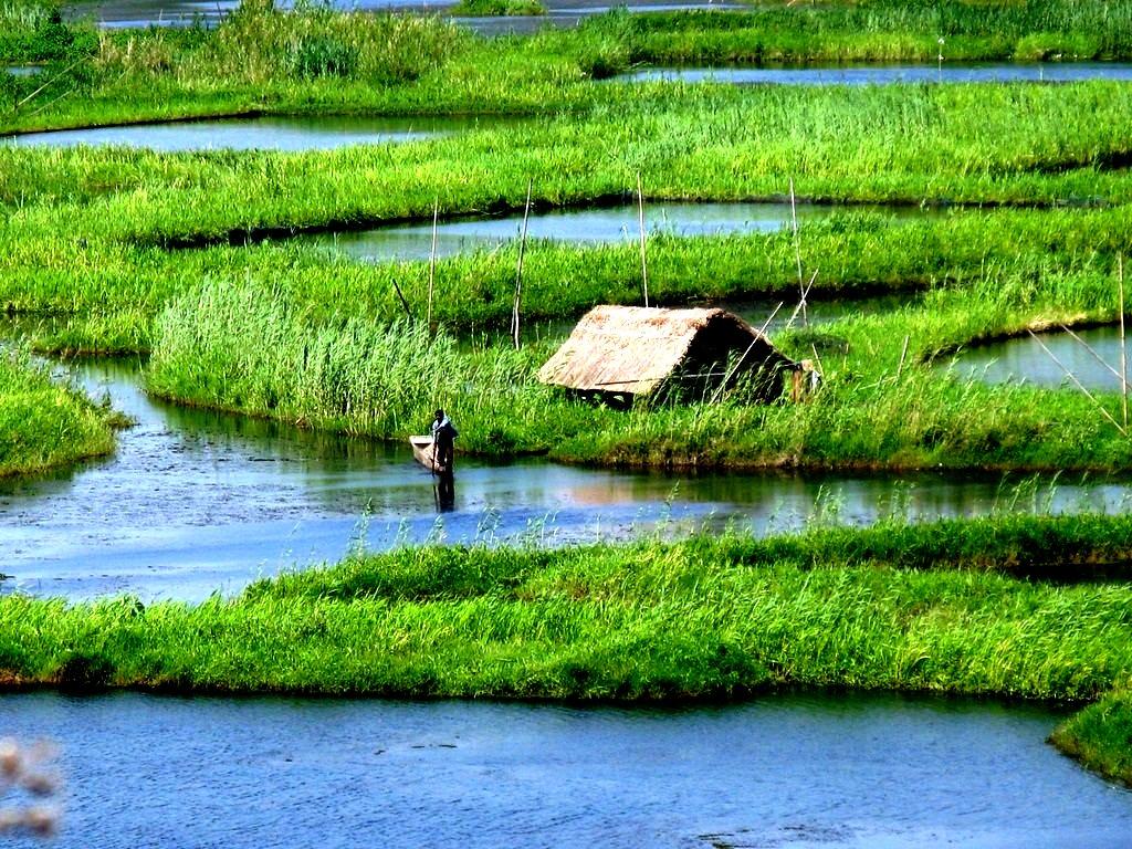 фермеры озера локтак