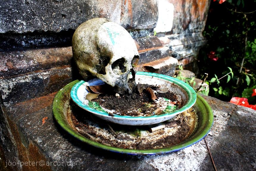 тарелка с черепом
