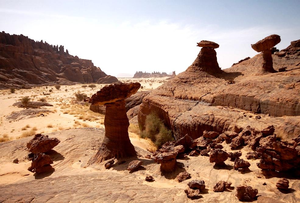 каменные грибы эннеди