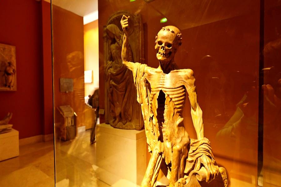 скелет лувра