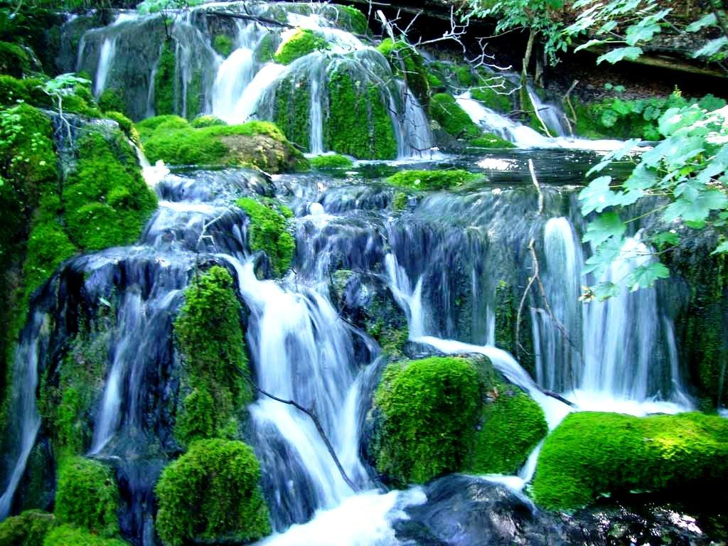 водные потоки в парке плитвицкие озера
